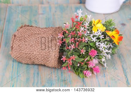 Bouquet of flowers  set display on white background