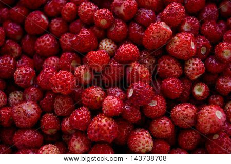 Fresh strawberries closeup, background berries, summer time
