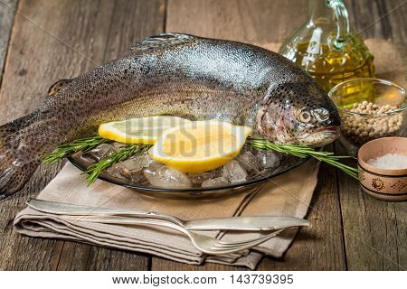 Fresh trout with lemon and rosemary on plate with ice