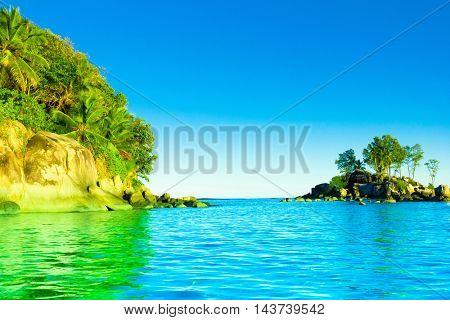 Shore Jungle Panorama