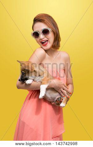 Beautiful young asian woman in nice spring dress posing in studio with corgi puppy. Fashion photo.