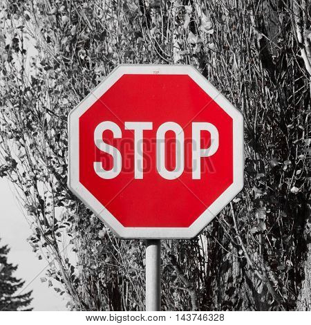 Stop traffic sign - white text in red octagonal shape. The most known traffic sign.