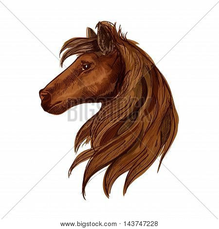 Horse head portrait. Brown stallion foal with mane and staring eyes