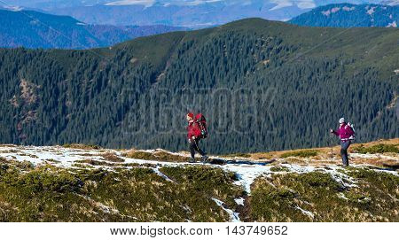 Two Hikers walking along Mountain Crest Bright Colors sporty Clothing Backpacks and trekking Poles Hills covered by green Forest on Background
