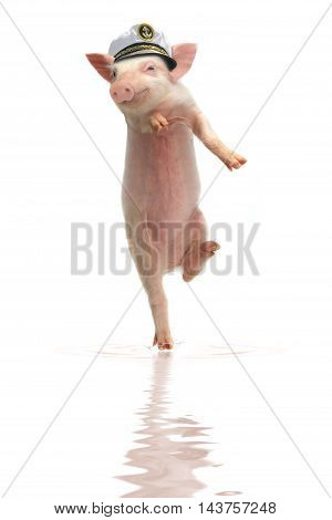 Smile a pig on hind legs walking on water