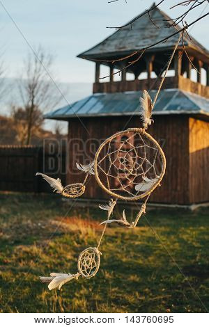 dream catcher hanging from a tree in a field at sunset.wooden Fortress.