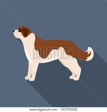 St. Bernard dog vector illustration icon in flat design