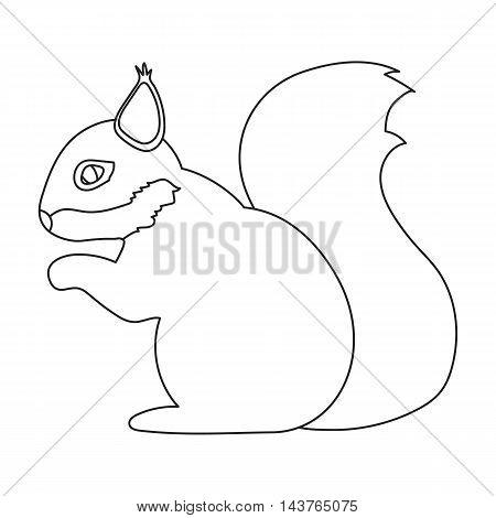 Squirrel vector illustration icon in line design