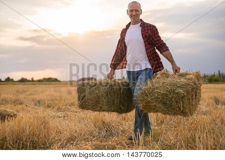 Working Farmer Man With Straw Bales