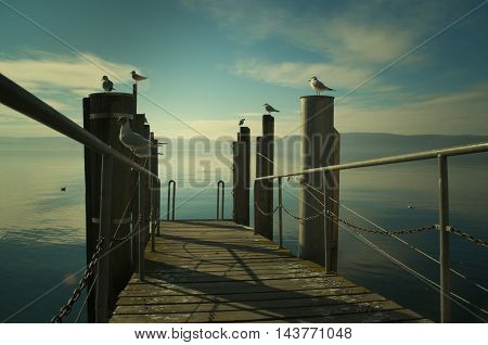 footbridge into the bodensee, germany - lake of constance