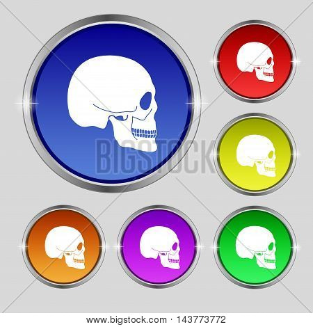 Skull Icon Sign. Round Symbol On Bright Colourful Buttons. Vector