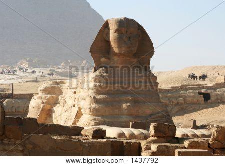 Cairo  The Sphinx At Giza