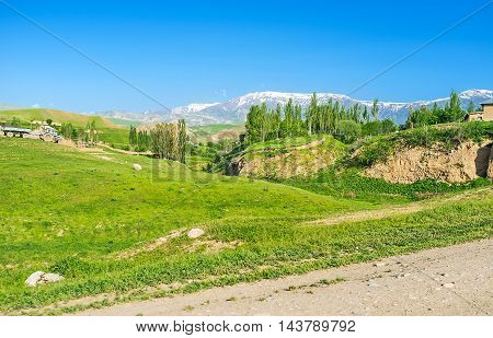 The hilly meadow in Uzbek kishlak (village) with the small forest and snowy Gissar Range on the distance Uzbekistan.