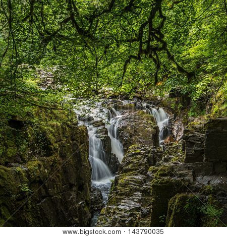 Black Linn Falls at the Hermitage on the River Braan near Dunked in Scotland