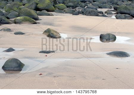 A shot of a set os small puddles in the sand on the shore of a beach