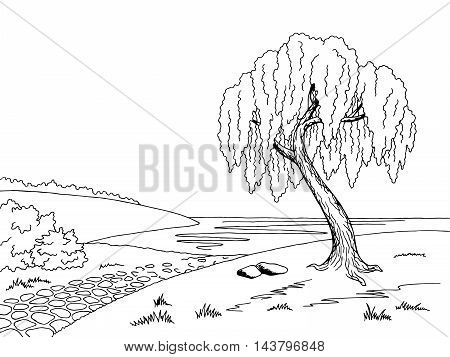 Old road willow tree graphic art black white landscape sketch illustration vector