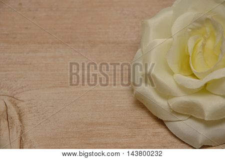 A white artificial rose isolated on a wooden background
