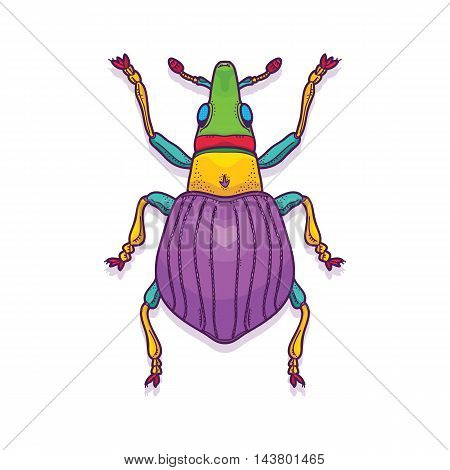 Vector Illustration of Colorful Beetle Bug Insect Hand Drawn, Apion artemisiae