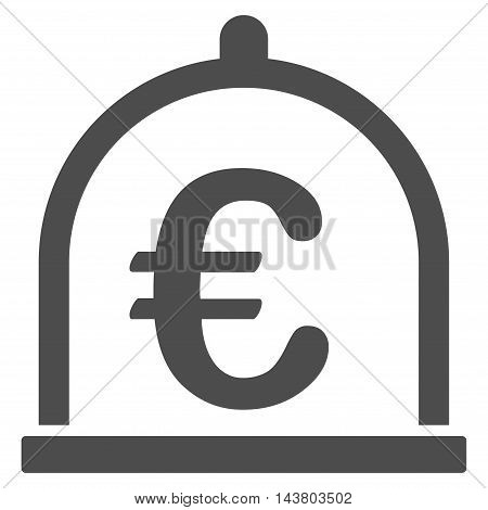 Euro Storage icon. Vector style is flat iconic symbol with rounded angles, gray color, white background.