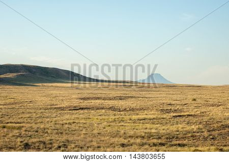 Steppe in the summer. Central Asia Kazakhstan