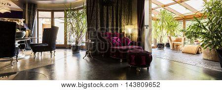 Velour Purple Armchair