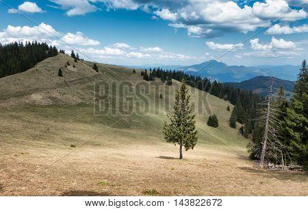 Great fatra mountain range - Nizne Siprunske Sedlo - Slovakia