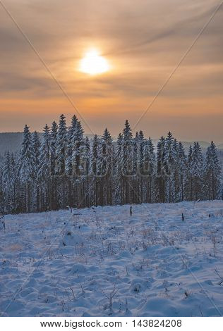 Wintertime in Harz National Park near Braunlage,Germany