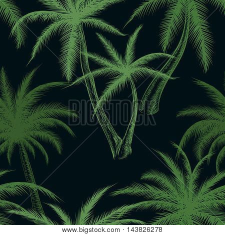 Tropical palm trees leaf pattern. Sketch palms foliage vector background