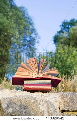 Opened hardback book diary, fanned pages on blurred nature landscape backdrop, lying in summer field on green grass. Books stacking. Copy space, back to school education background.