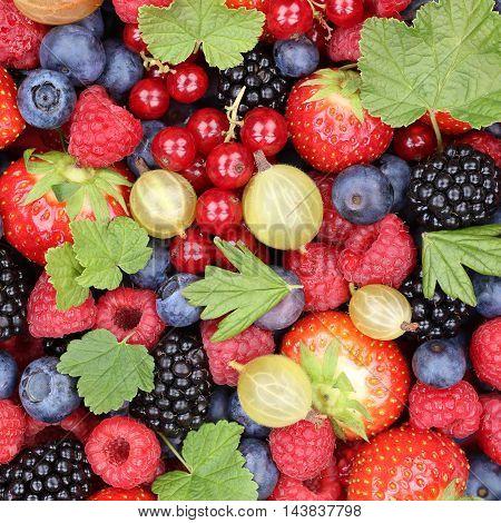 Berry Fruits Berries Fruit Collection Strawberries, Blueberries Raspberries Leaves Top View