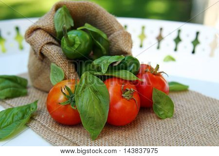 Freshly picked tomatoes basil leaves and green Jalapeno peppers with shallow depth of field with copy space