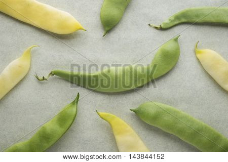 Yellow and green beans on a blur background.