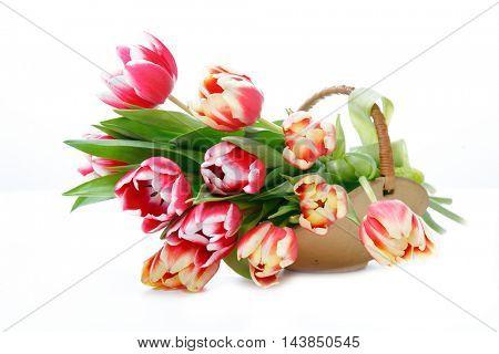 Tulip in wooden basket