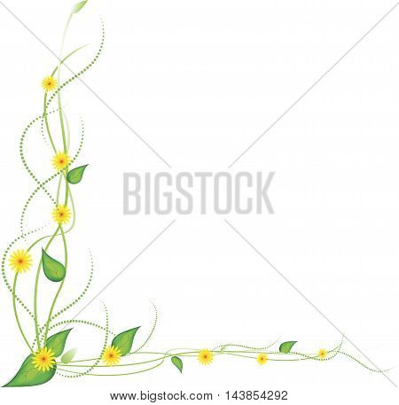yellow flowers on a white background, vector.