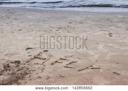 The sea the ocean on the sand created written the word