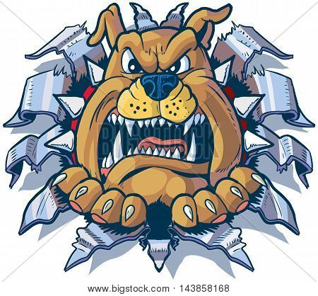 Vector cartoon clip art illustration of an angry bulldog with a spiked collar ripping punching or tearing through aluminum or chrome steel sheet metal.