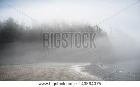 A foggy morning on the west coast