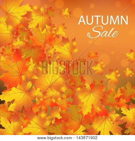 Autumn sales vector background with maple leaves