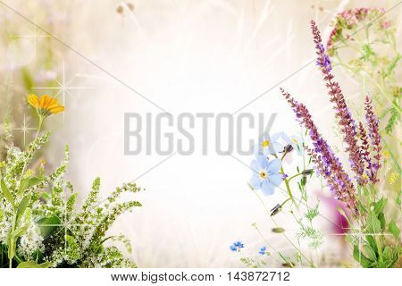Beautiful wildflowers design with space for text. Pastel blurred background.