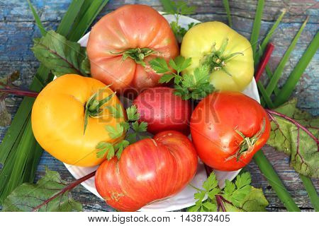 Ripe tomatoes of different colors and varieties are on the plate