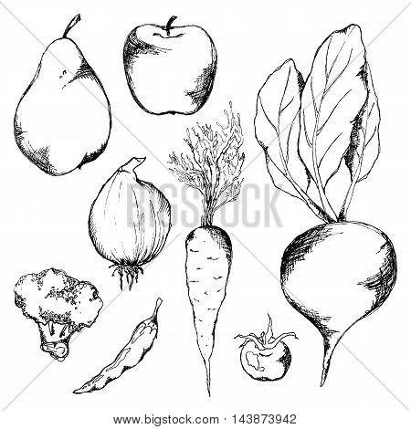 Vegetable fruit monochrome ink hand drawn set vector