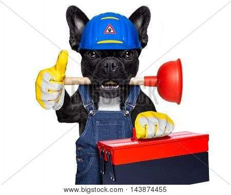 Plumber Dog With Plunger