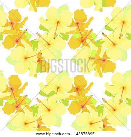 Seamless Pattern With Of Hibiscus. Vector Illustration