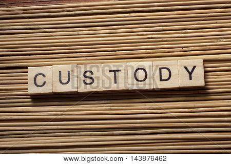 the word of CUSTODY on wood abc cubes.