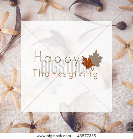 Happy Thanks giving on autumn flowers and leaves toning background