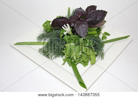 Assorted fresh herbs on white plate on white plate