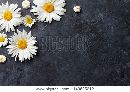 Garden chamomile flowers over stone table background. Backdrop with copy space