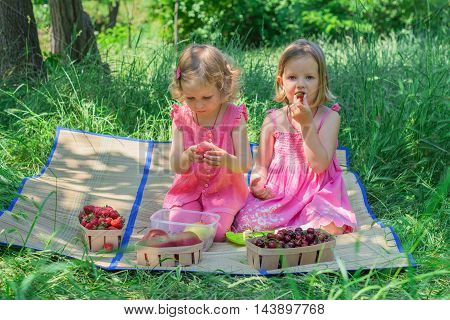 Small cute funny girls (sisters) at the picnic. Selective focus.