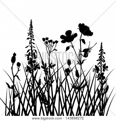vector silhouettes of field flowers and grass, background with wild plants, black monochrome floral template, hand drawn illustration