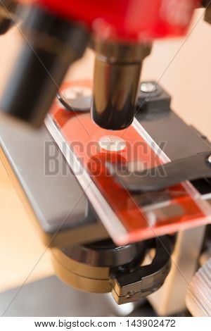 microscope for kid to research the nature close up